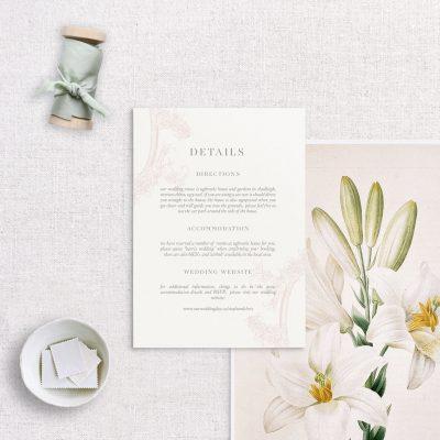 Details Card - Clara - Miss Modern Calligraphy